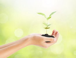 Ressourcenarbeit & Lösungsorientierung