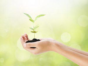 Persönlichkeitsentwicklung & Ressourcenstärkung